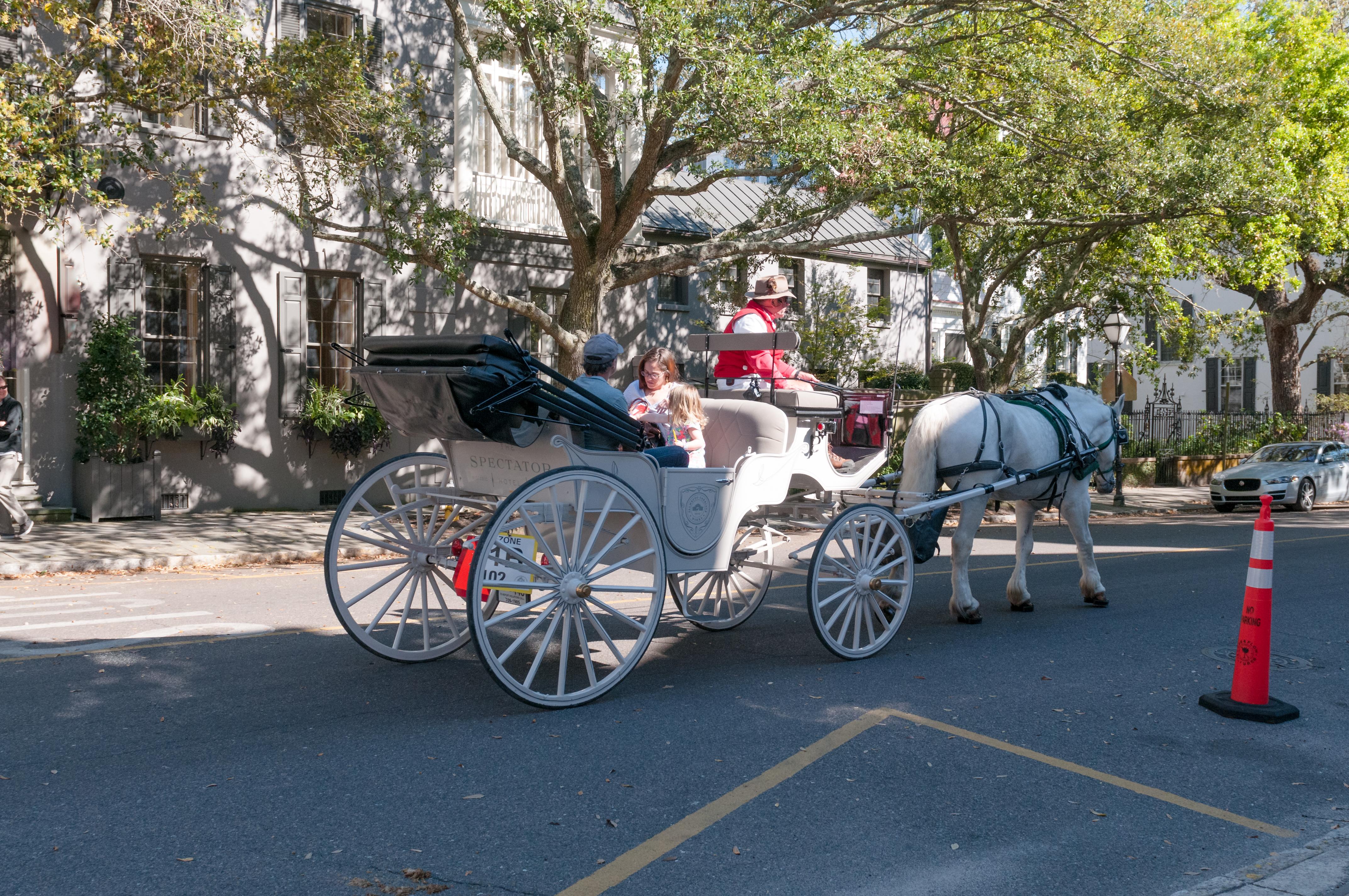 Horse Drawn Carriage Charleston SC