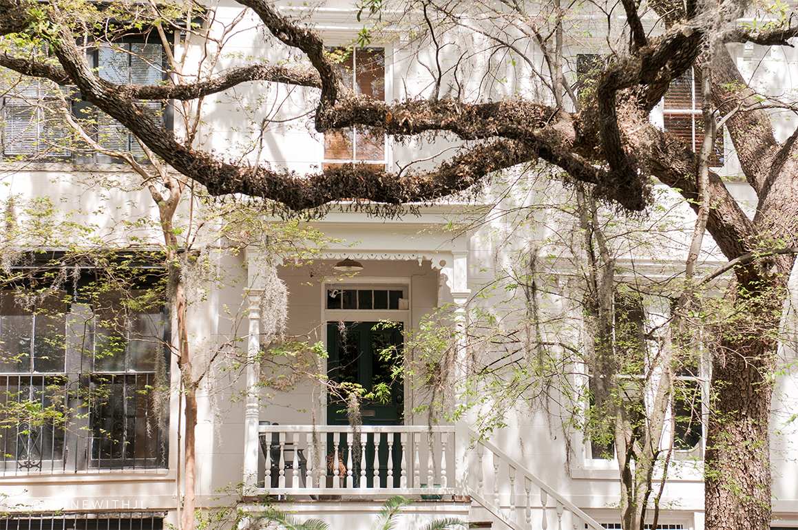 historic savannah home behind southern oak tree and spanish moss