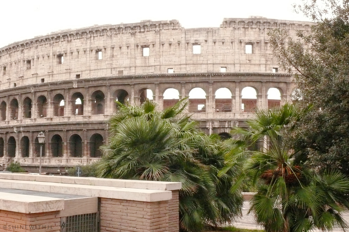 roman Colosseum and palm trees Italy