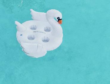 swan raft in pool