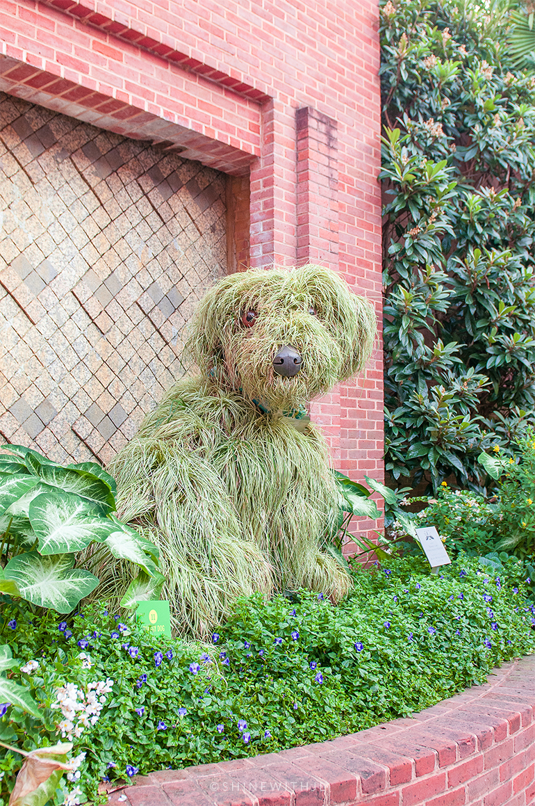 shaggy dog sculpture mosaiculture atlanta botanical gardens