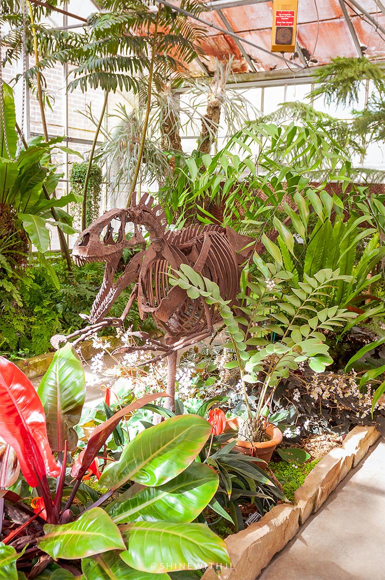 dinosaur tropical plants greenhouse