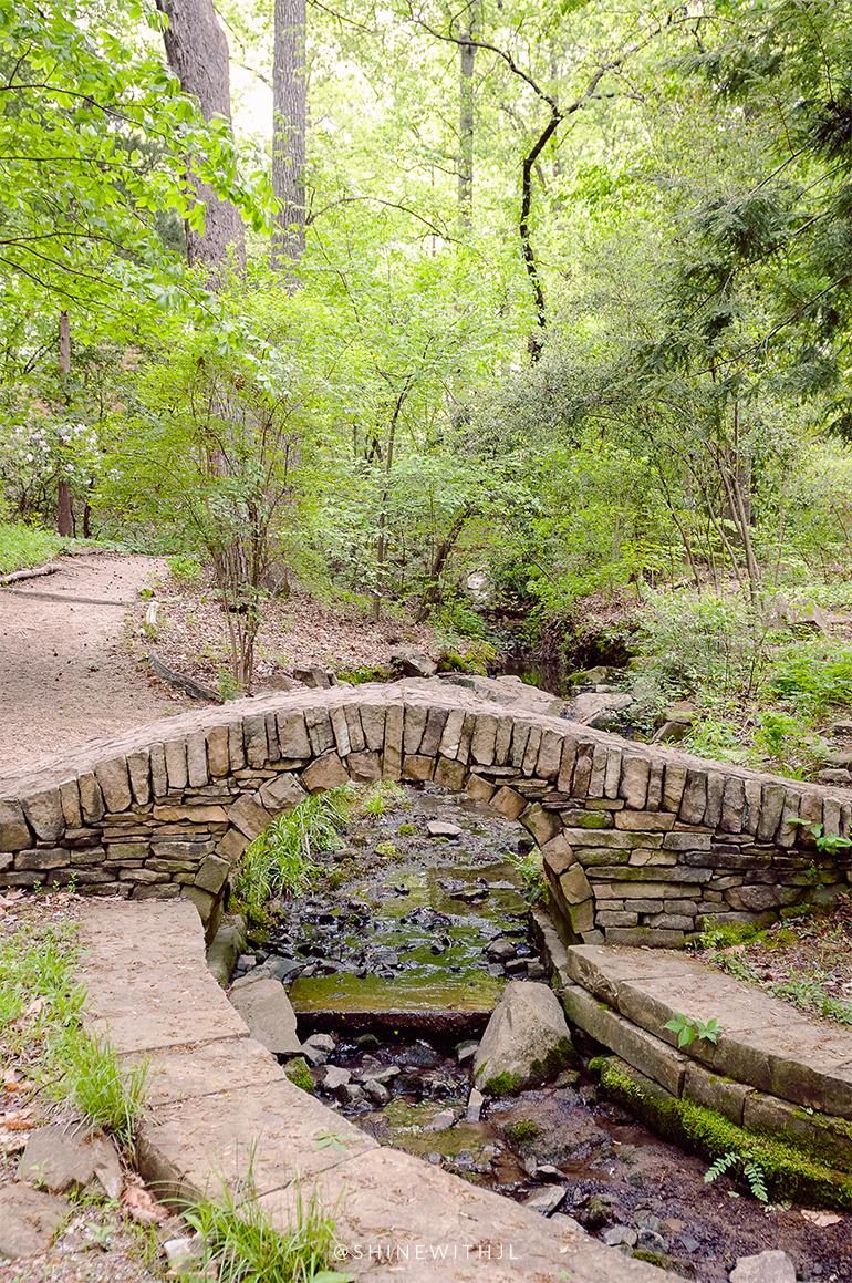 stone bridge over water University of Charlotte Botanical Gardens April