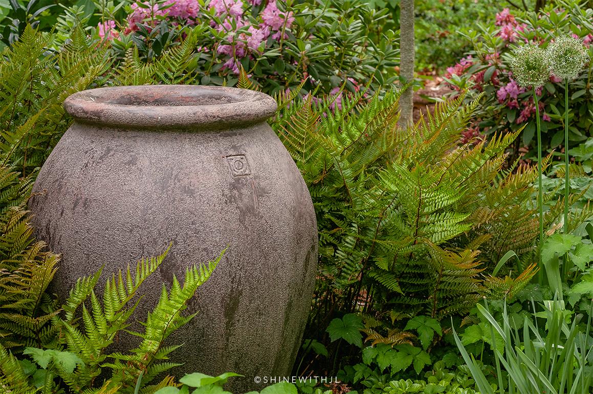 decorative ferns around pottery duke mansion
