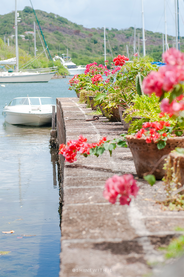 potted plants and boats at nelson's dockyard antigua