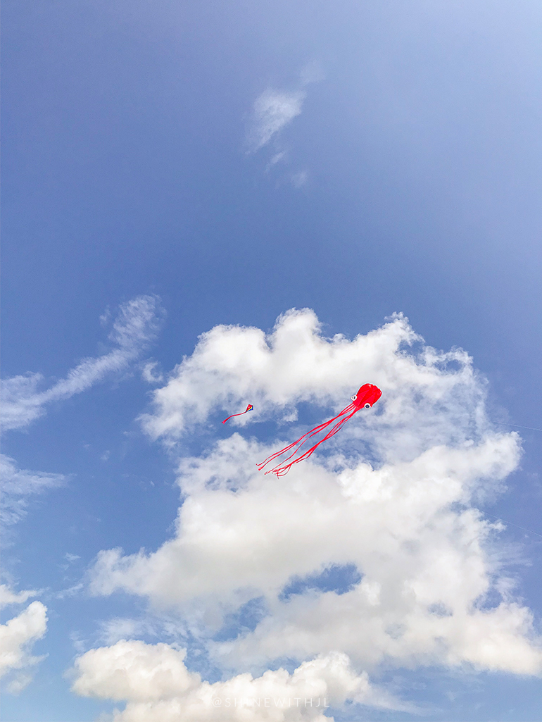 octopus kite in a cloudy sky