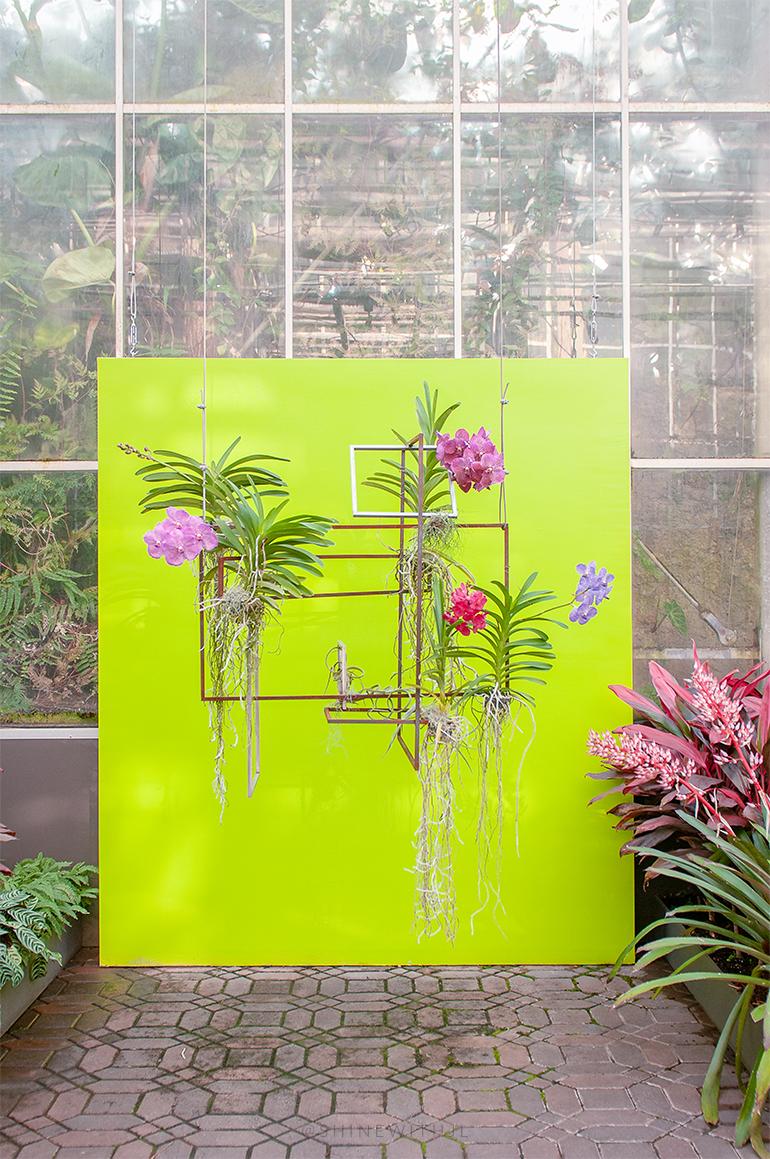 instagram worthy spots atlanta botanical gardens