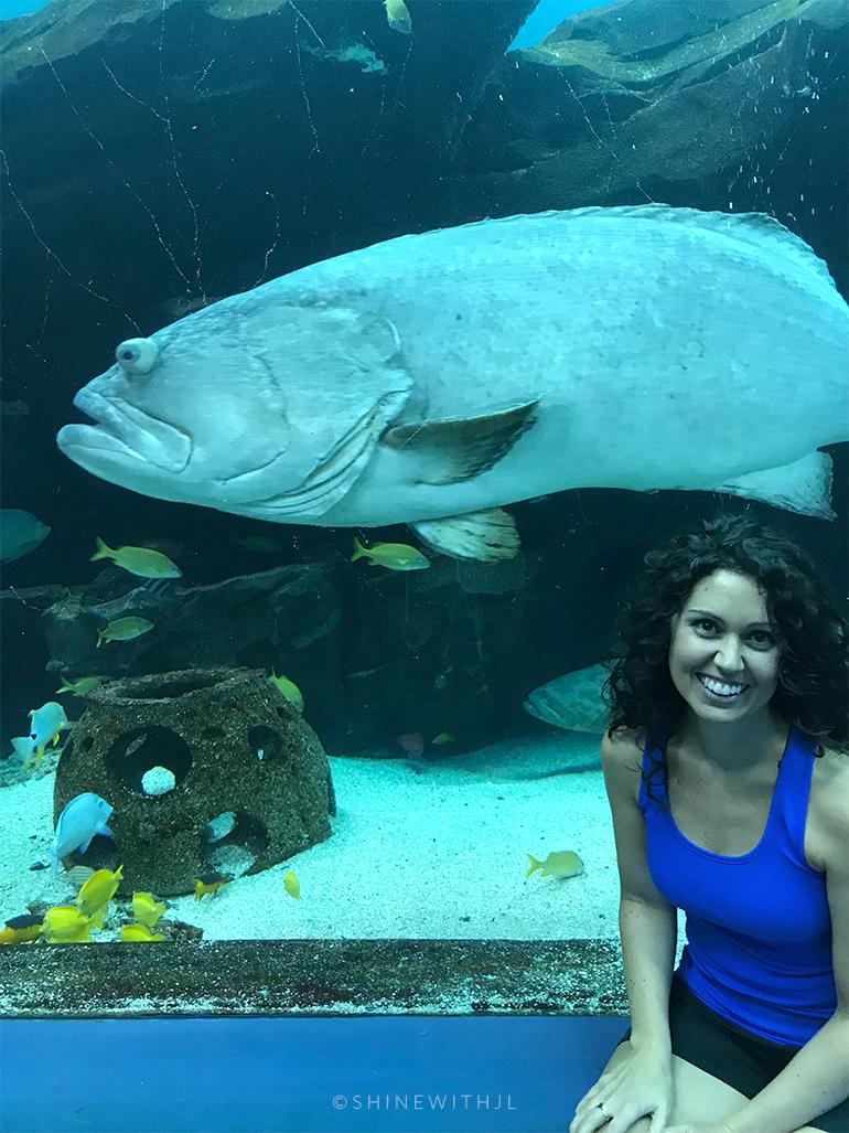 selfie with large fish georgia aquarium