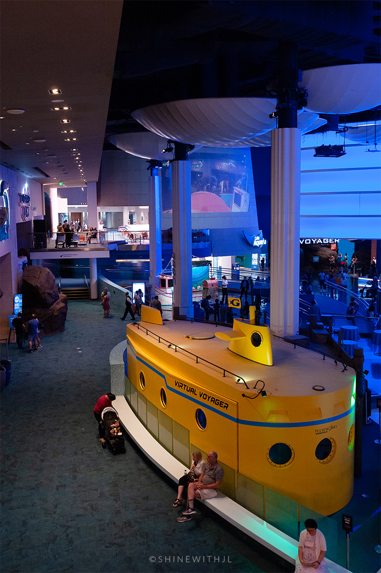 yellow submarine at georgia aquarium downtown atlanta