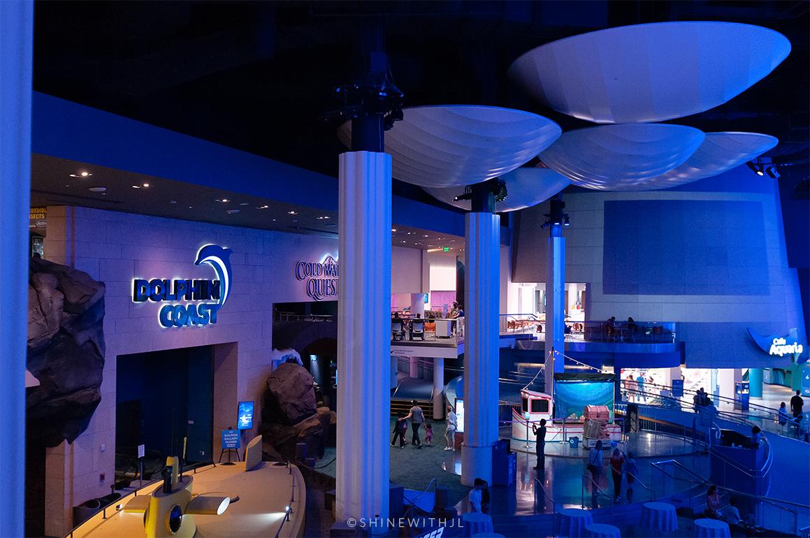 inside georgia aquarium first floor