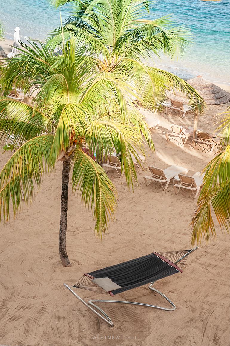 hammock on the beach under a palm tree pink gin beach grenada